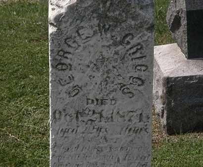 GRIGGS, GEORGE W. - Lorain County, Ohio | GEORGE W. GRIGGS - Ohio Gravestone Photos