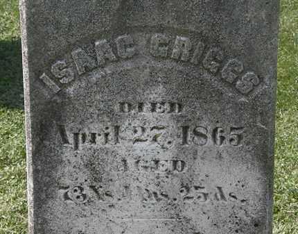 GRIGGS, ISAAC - Lorain County, Ohio | ISAAC GRIGGS - Ohio Gravestone Photos