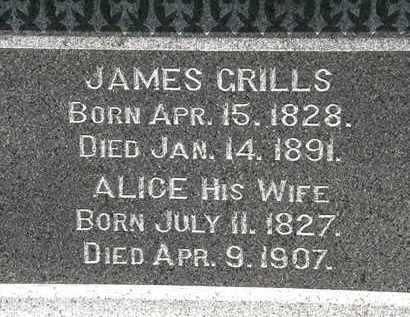GRILLS, ALICE - Lorain County, Ohio | ALICE GRILLS - Ohio Gravestone Photos