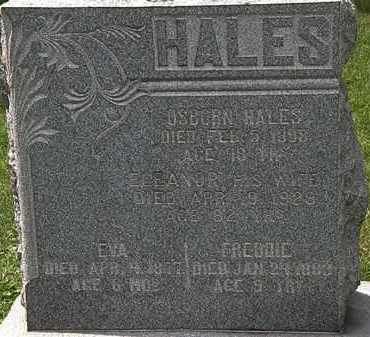 HALES, EVA - Lorain County, Ohio | EVA HALES - Ohio Gravestone Photos