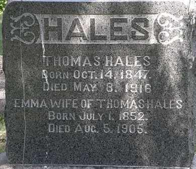 HALES, THOMAS - Lorain County, Ohio | THOMAS HALES - Ohio Gravestone Photos
