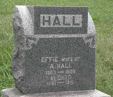HALL, EFFIE - Lorain County, Ohio | EFFIE HALL - Ohio Gravestone Photos