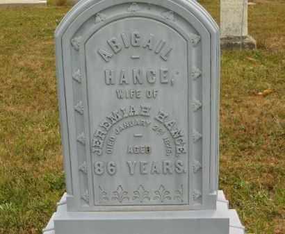 HANCE, ABIGAIL - Lorain County, Ohio | ABIGAIL HANCE - Ohio Gravestone Photos