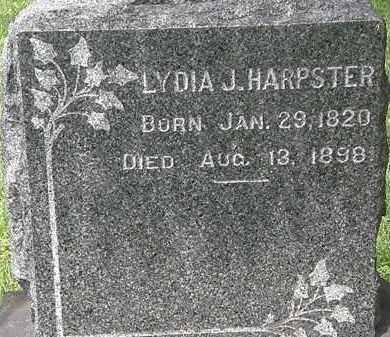 HARPSTER, LYDIA J. - Lorain County, Ohio | LYDIA J. HARPSTER - Ohio Gravestone Photos
