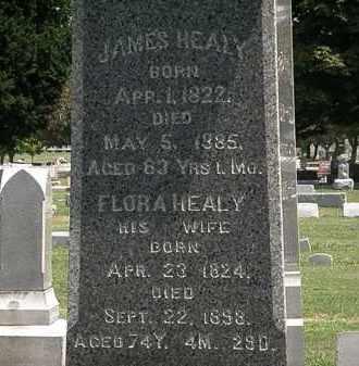 HEALY, JAMES - Lorain County, Ohio | JAMES HEALY - Ohio Gravestone Photos