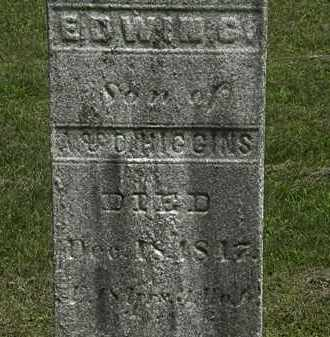 HIGGINS, EDWIN G. - Lorain County, Ohio | EDWIN G. HIGGINS - Ohio Gravestone Photos
