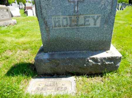 HOLLEY, MARY - Lorain County, Ohio | MARY HOLLEY - Ohio Gravestone Photos