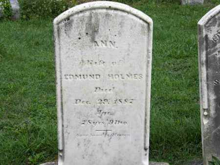 HOLMES, EDMUND - Lorain County, Ohio | EDMUND HOLMES - Ohio Gravestone Photos