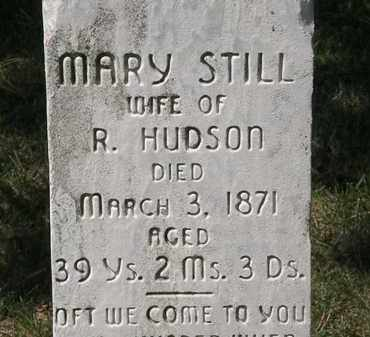 STILL HUDSON, MARY - Lorain County, Ohio | MARY STILL HUDSON - Ohio Gravestone Photos
