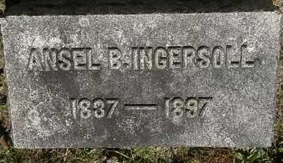 INGERSOLL, ANSEL B. - Lorain County, Ohio | ANSEL B. INGERSOLL - Ohio Gravestone Photos