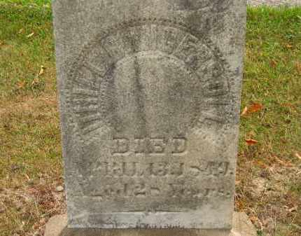 INGERSOLL, ITHIEL - Lorain County, Ohio | ITHIEL INGERSOLL - Ohio Gravestone Photos