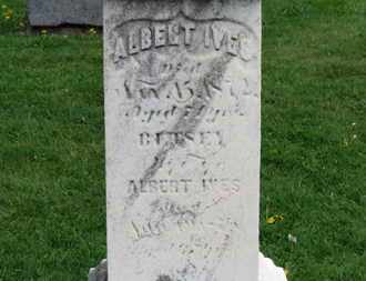IVES, BETSEY - Lorain County, Ohio | BETSEY IVES - Ohio Gravestone Photos