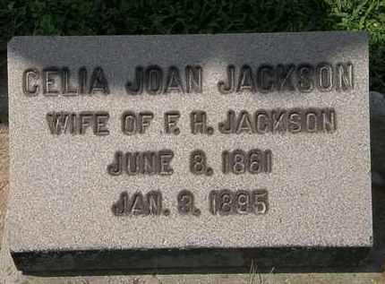 JACKSON, CELIA JOAN - Lorain County, Ohio | CELIA JOAN JACKSON - Ohio Gravestone Photos