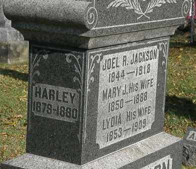 JACKSON, MARY J. - Lorain County, Ohio | MARY J. JACKSON - Ohio Gravestone Photos