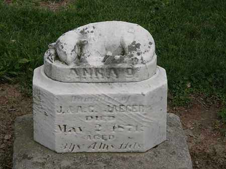 JAEGER, ANNA D. - Lorain County, Ohio | ANNA D. JAEGER - Ohio Gravestone Photos