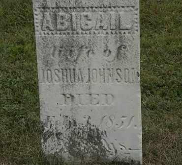 JOHNSON, ABIGAIL - Lorain County, Ohio | ABIGAIL JOHNSON - Ohio Gravestone Photos