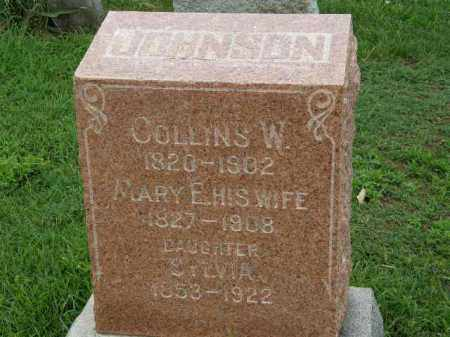 JOHNSON, COLLINS W. - Lorain County, Ohio | COLLINS W. JOHNSON - Ohio Gravestone Photos