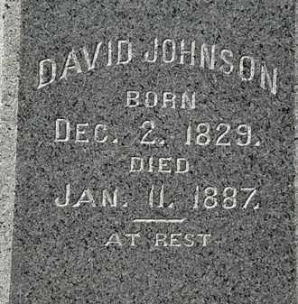 JOHNSON, DAVID - Lorain County, Ohio | DAVID JOHNSON - Ohio Gravestone Photos