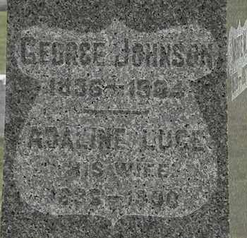JOHNSON, GEORGE - Lorain County, Ohio | GEORGE JOHNSON - Ohio Gravestone Photos