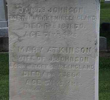 ATKINSON JOHNSON, MARY - Lorain County, Ohio | MARY ATKINSON JOHNSON - Ohio Gravestone Photos