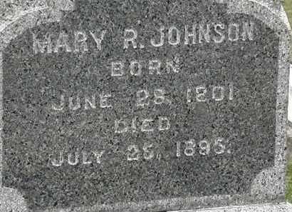 JOHNSON, MARY P. - Lorain County, Ohio | MARY P. JOHNSON - Ohio Gravestone Photos