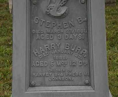 JOHNSON, HARRY BURR - Lorain County, Ohio | HARRY BURR JOHNSON - Ohio Gravestone Photos