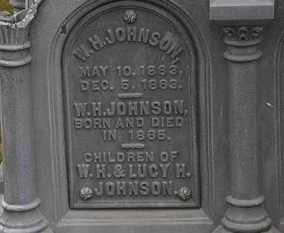 JOHNSON, W.H. - Lorain County, Ohio | W.H. JOHNSON - Ohio Gravestone Photos