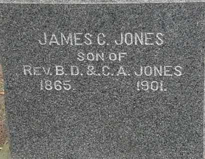 JONES, B.D. - Lorain County, Ohio | B.D. JONES - Ohio Gravestone Photos