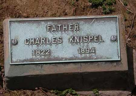 KNISPEL, CHARLES - Lorain County, Ohio | CHARLES KNISPEL - Ohio Gravestone Photos