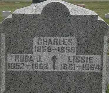 KNOWLES, CHARLES - Lorain County, Ohio | CHARLES KNOWLES - Ohio Gravestone Photos