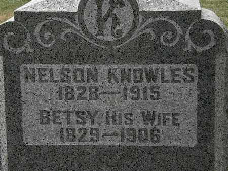 KNOWLES, NELSON - Lorain County, Ohio | NELSON KNOWLES - Ohio Gravestone Photos