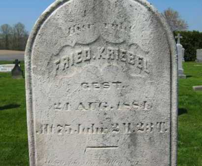 KRIEBEL, FRIED. - Lorain County, Ohio | FRIED. KRIEBEL - Ohio Gravestone Photos