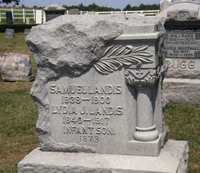 LANDIS, LYDIA J. - Lorain County, Ohio | LYDIA J. LANDIS - Ohio Gravestone Photos