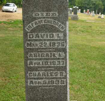 LANG, DAVID L. - Lorain County, Ohio | DAVID L. LANG - Ohio Gravestone Photos