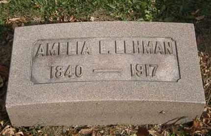 LEHMAN, AMELIA E. - Lorain County, Ohio | AMELIA E. LEHMAN - Ohio Gravestone Photos
