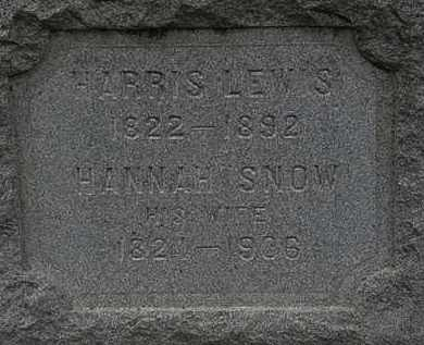 SNOW LEWIS, HANNAH - Lorain County, Ohio | HANNAH SNOW LEWIS - Ohio Gravestone Photos