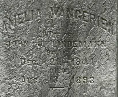 LINDEMAN LINDEMANN, AMELIA - Lorain County, Ohio | AMELIA LINDEMAN LINDEMANN - Ohio Gravestone Photos