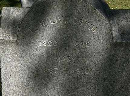 LIVINGSTON, L.R. - Lorain County, Ohio | L.R. LIVINGSTON - Ohio Gravestone Photos