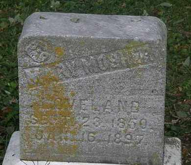 LOVELAND, MARY - Lorain County, Ohio | MARY LOVELAND - Ohio Gravestone Photos