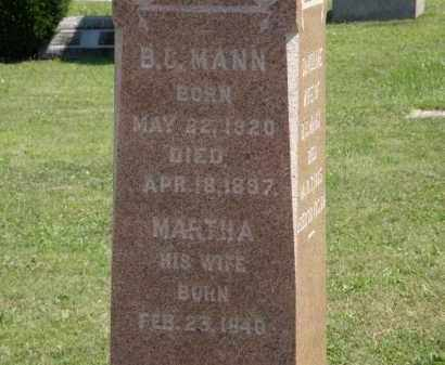 MANN, MARTHA - Lorain County, Ohio | MARTHA MANN - Ohio Gravestone Photos