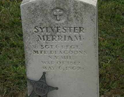 MERRIAM, SYLVESTER - Lorain County, Ohio | SYLVESTER MERRIAM - Ohio Gravestone Photos