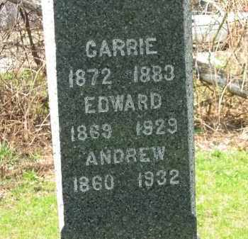 MAURER, ANDREW - Lorain County, Ohio | ANDREW MAURER - Ohio Gravestone Photos
