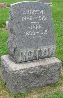 FERGUSON MCADAM, JANE - Lorain County, Ohio | JANE FERGUSON MCADAM - Ohio Gravestone Photos