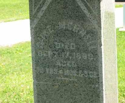 MENNELL, MARMADUKE (DUKE) - Lorain County, Ohio | MARMADUKE (DUKE) MENNELL - Ohio Gravestone Photos