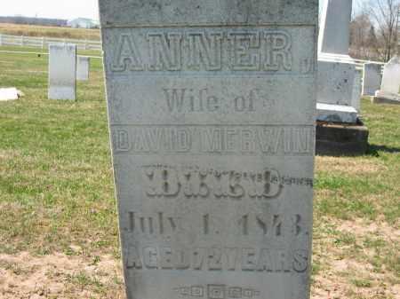 MERWIN, DAVID - Lorain County, Ohio | DAVID MERWIN - Ohio Gravestone Photos