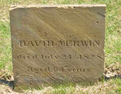 MERWIN, DAVID - Lorain County, Ohio | DAVID MERWIN - Ohio Gravestone Photos