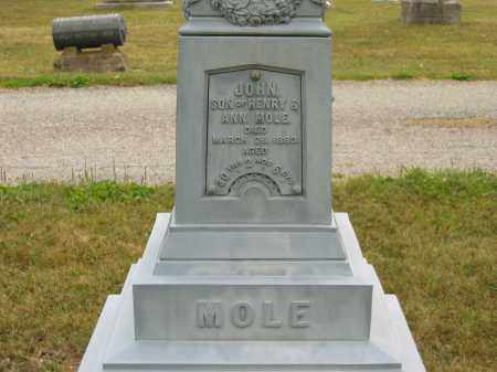 MOLE, ANN - Lorain County, Ohio | ANN MOLE - Ohio Gravestone Photos