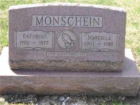 SCHMITZ MONSCHEIN, MARCELLA AGNES - Lorain County, Ohio | MARCELLA AGNES SCHMITZ MONSCHEIN - Ohio Gravestone Photos