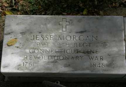 MORGAN, JESSE - Lorain County, Ohio | JESSE MORGAN - Ohio Gravestone Photos