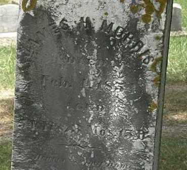 MORRIS, JAMES H. - Lorain County, Ohio | JAMES H. MORRIS - Ohio Gravestone Photos